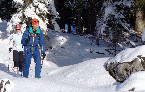 schneeschuh-wanderung-reit-im-winkl-wald