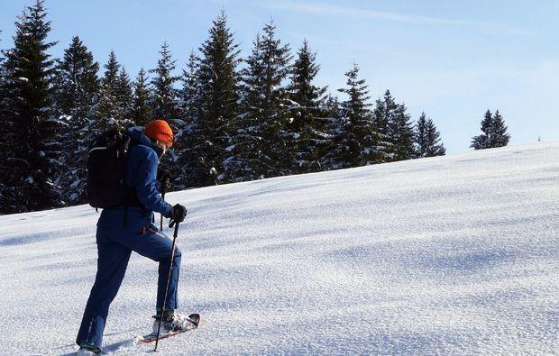 schneeschuh-wanderung-reit-im-winkl-wintertour