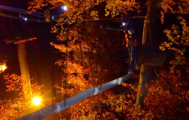 flying-fox-berlingen-by-night