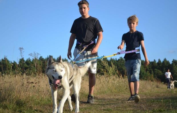 schlittenhunde-workshop-frankendorf-spazieren