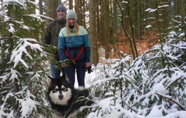 husky-trekking-clausthal-zellerfeld-bg1
