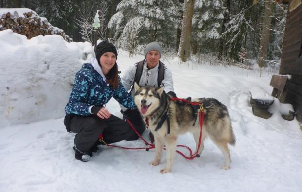 husky-trekking-clausthal-zellerfeld-bg2