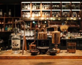 Gin Tasting Mainz Von bis zu 7 Sorten Gin & Tonic Water