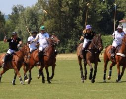 Polo Schnupperkurs