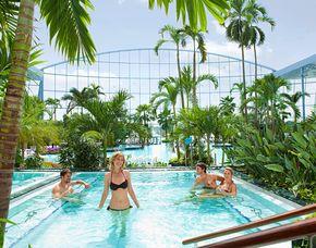 Thermen & SPA Hotels - Therme inkl. - Mühlhausen Hotel Leo – Tageskarte für das Palmenparadies Sinsheim, Dinner