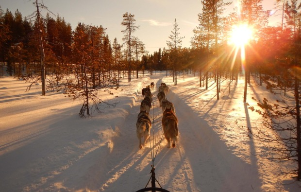 husky-asele-abenteuer-trip-outdoor