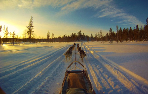 husky-asele-abenteuer-trip-panorama