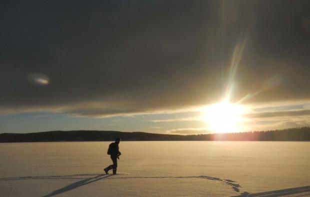 husky-asele-abenteuer-trip-sonnenuntergang
