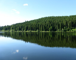 Segway-Tour - Schluchsee - Panorama Segway-Tour - 90 Minuten