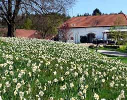 Kuschelwochenende,Tholey - neu Hotel-Restaurant Hofgut Imsbach - 5-Gänge-Menü