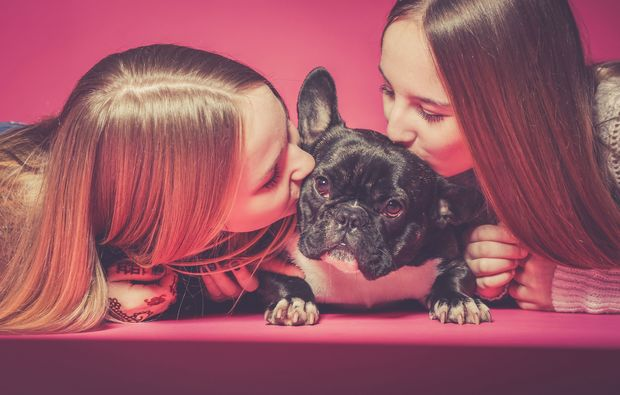 animalisches-fotoshooting-mainz-shooting-mit-hund