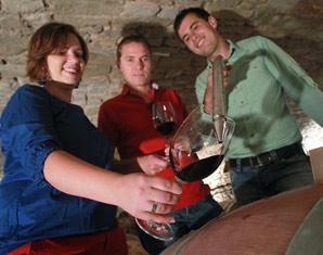 Bild Weinwelten - Eine Weinprobe ist ein wahres Fest für Weinliebhaber