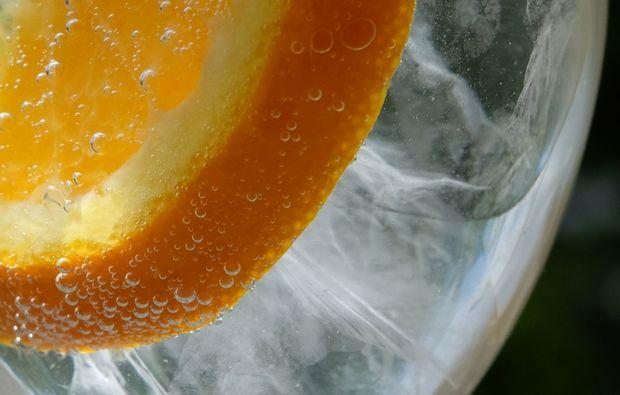 aquatic-fototour-hamburg-orange
