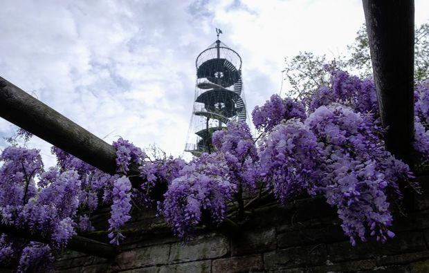 fotokurs-stuttgart-lila