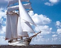 segeln-hanse-sail