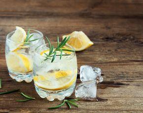 Gin Tasting von 14 Sorten Gin