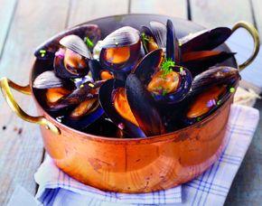 Meeresfrüchte- & Fisch-Kochkurs Mehr-Gänge-Menü, inkl. Getränke