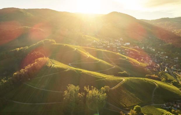 wein-verkostung-sasbachwalden-panorama