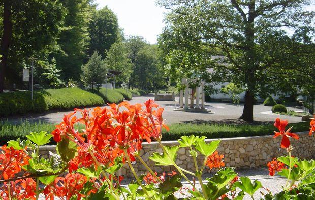 entspannen-traeumen-quedlinburg-ot-bad-suderode-wochenende