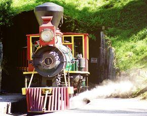 Kindheitsträume - Lokführer für einen Tag - Bestwig-Wasserfall Lokführer für einen Tag