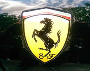 Ferrari fahren Knüllwald