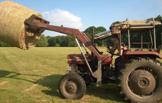 tiere-pflegen-xanten-traktor