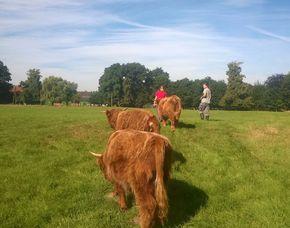 Tiere pflegen Xanten