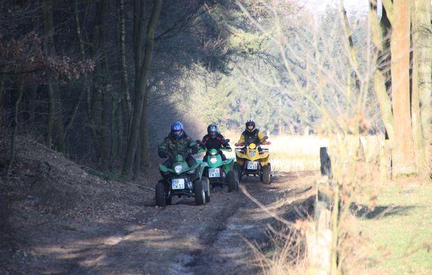 quad-tour-knuellwald-wald