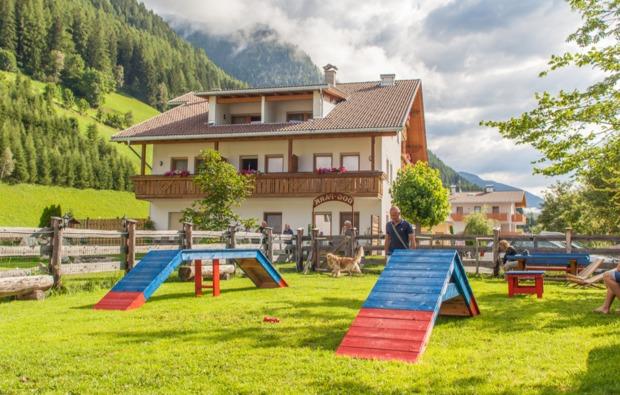 urlaub-mit-hund-steinhaus-im-ahrntal-training
