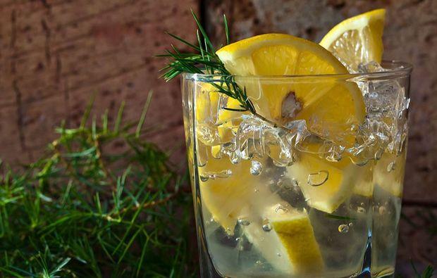 gin-tasting-frankfurt-am-main-verkostung