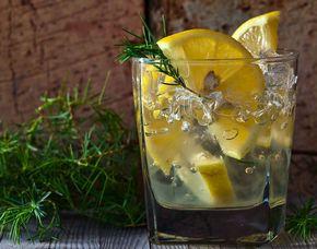 Gin-Tasting - Frankfurt am Main von 6 Sorten Gin