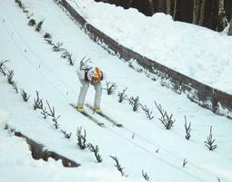 skispringen_1