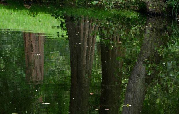 fotokurs-cuxhaven-gruen