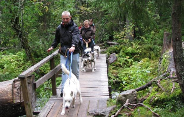 husky-trekking-frankendorf-wandern