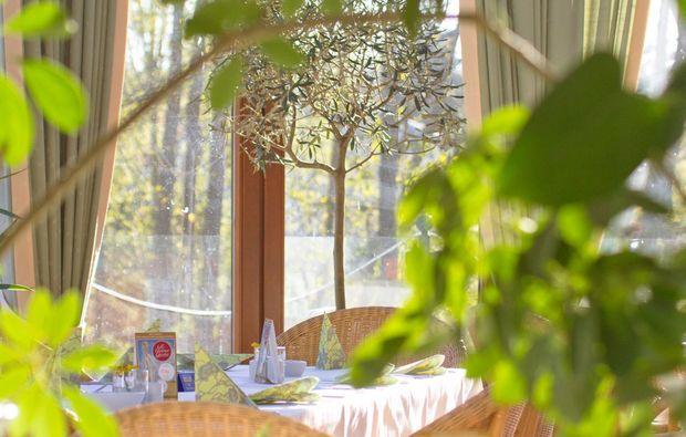 familienurlaub-ostseebad-trassenheide-restaurant