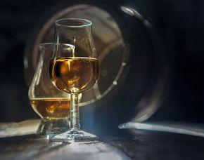 Whisky Tasting Köln