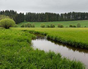 Kurzurlaub - 2 ÜN - Bad Großpertholz Edermühle - Einführung in den Hofalltag