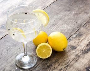 Gin-Tasting - Bochum von 10 Sorten Gin & Tonic Water
