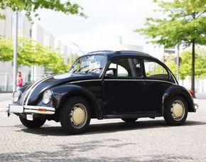 VW Käfer fahren für Zwei VW Käfer - 4 Stunden