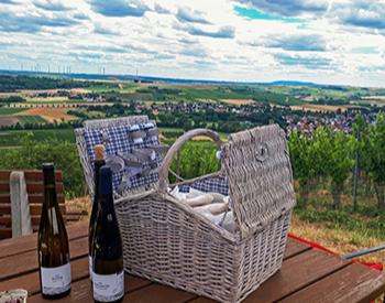 Weinbergwanderung Essenheim inkl. Picknick, Verkostung und Begrüßungssecco