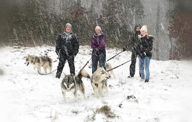 husky-outdoor-erlebnis