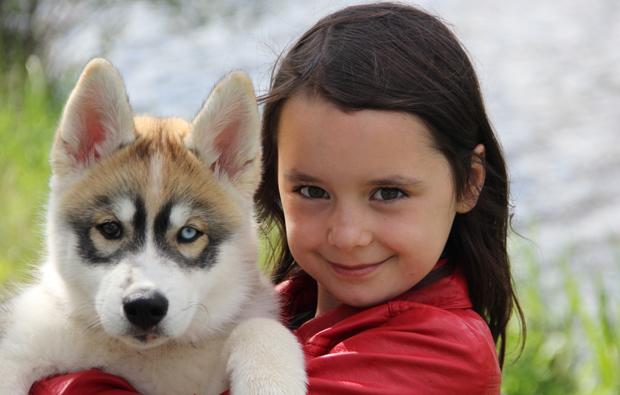 husky-winter-erlebnis