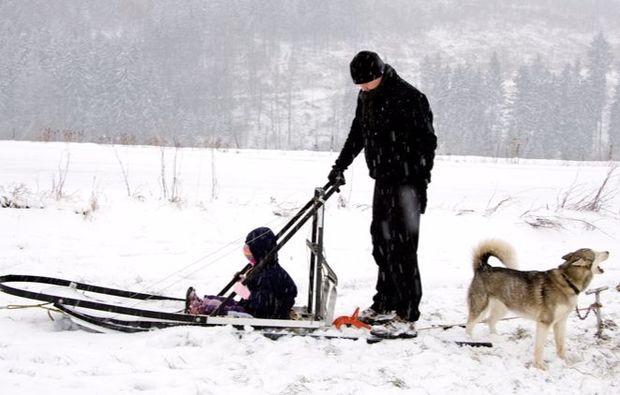 erlebnis-geschenk-schlittenhunde-workshop-neuhof-hauswurz