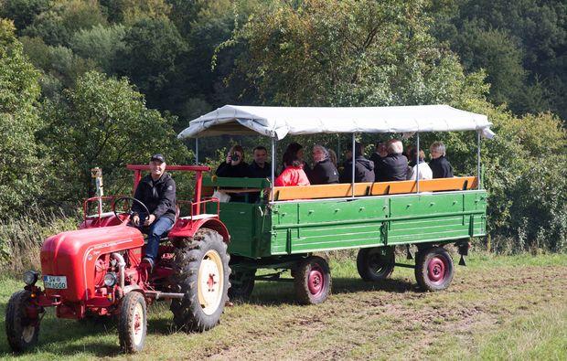 weinbergsrundfahrt-zeilitzheim-rundfahrt