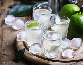 Gin Tasting Nürnberg