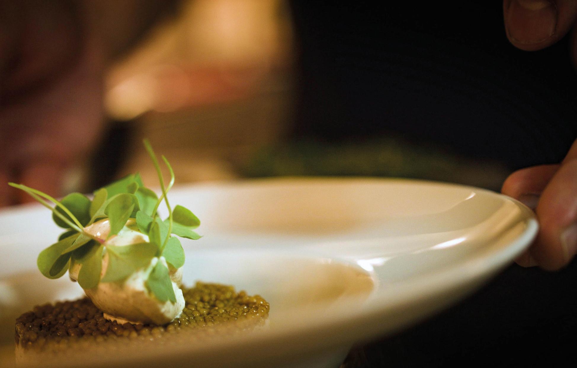 kulinarische-reise-potsdam-bg1