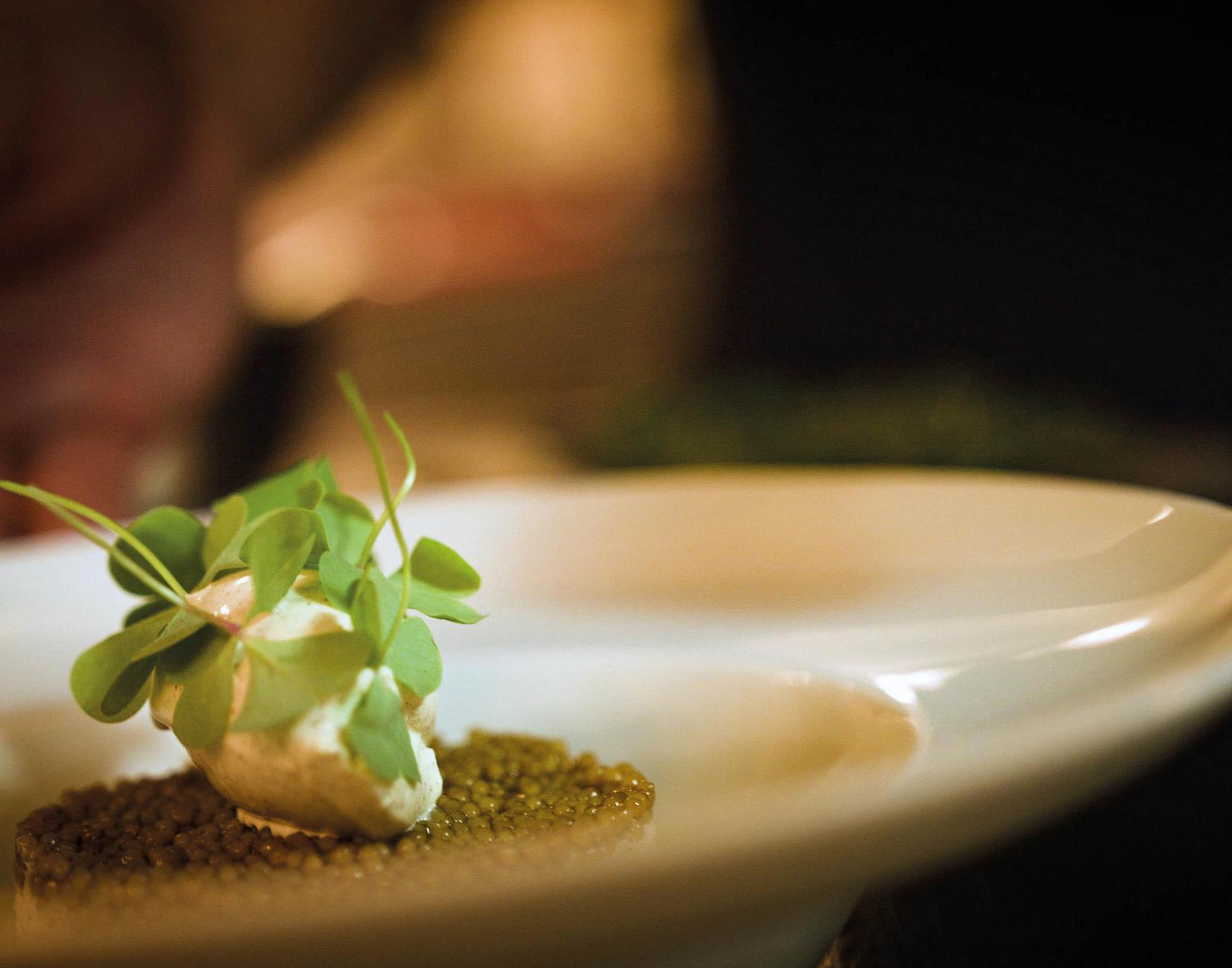 Kulinarischer Kurzurlaub mit Whisky Tast 2 ÜN, 2 Personen Seminaris Avendi Hotel Potsdam - Whisky Tasting, 3-Gänge-Menü
