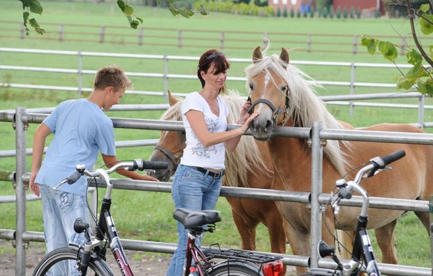romantikwochenende-kirchdorf-pferde