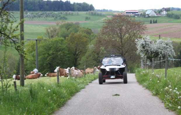 buggy-fahren-meissenheim-bg4