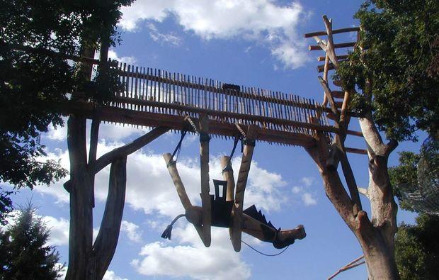 freizeitpark-neisseaue-kamel